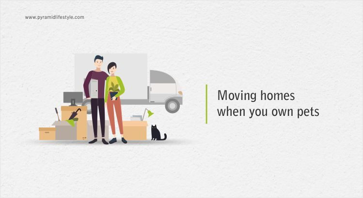 Moving homes when you own pets